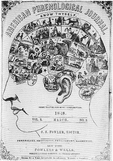 American Phrenological Journal